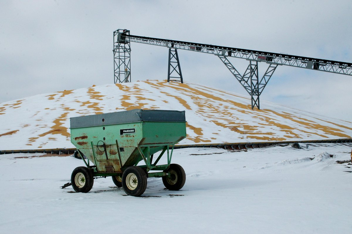As of yesterday, SD farmers had 432k acres of #corn left to combine as snow now covers the entire state. #harvest14 http://t.co/L5GLXaLzzF