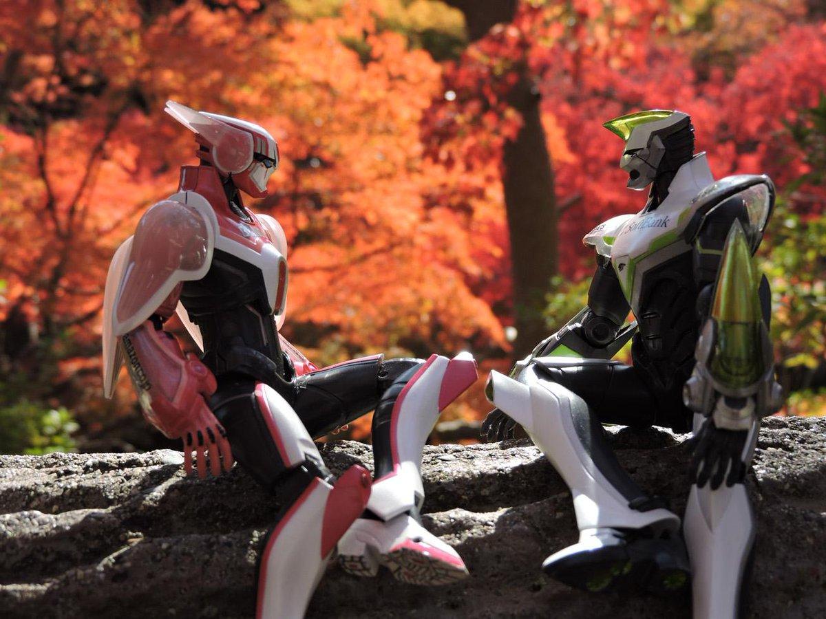 バディも紅葉の綺麗さに見惚れてたね( ˘ω˘ ) http://t.co/Op1apE453n