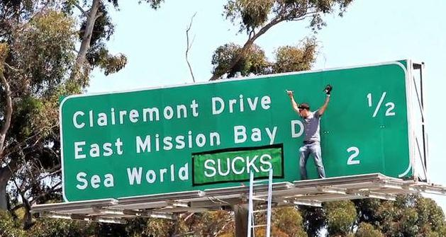 """""""Jackass"""" star Steve-O slapped with citation for SeaWorld sign prank http://t.co/yaZOfE8SDN http://t.co/S8SY6aPcDX"""