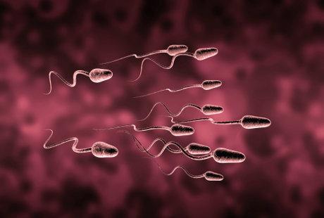 Tips Cara Menjaga Kualitas Sperma Yang Bagus Pada Pria - AnekaNews.net