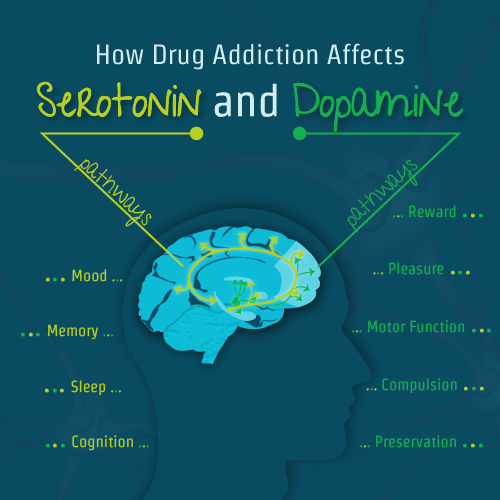 drug addiction dopamine