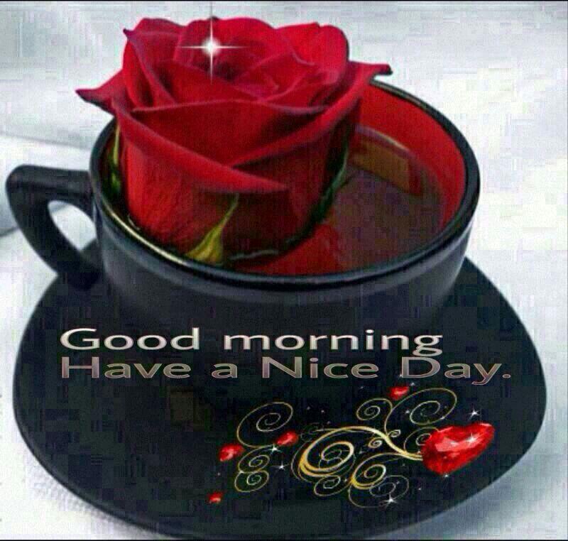 pankaj kumar mishra on twitter hi frds very very gd mrg nd have a