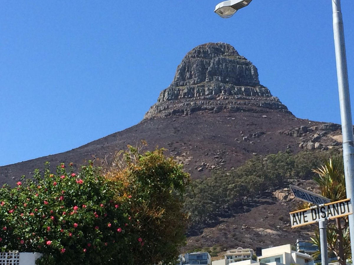 @LionsHeadCPT how are you feeling today? You're looking like you could use some aloe Vera or something. http://t.co/2XiJ12cPYb