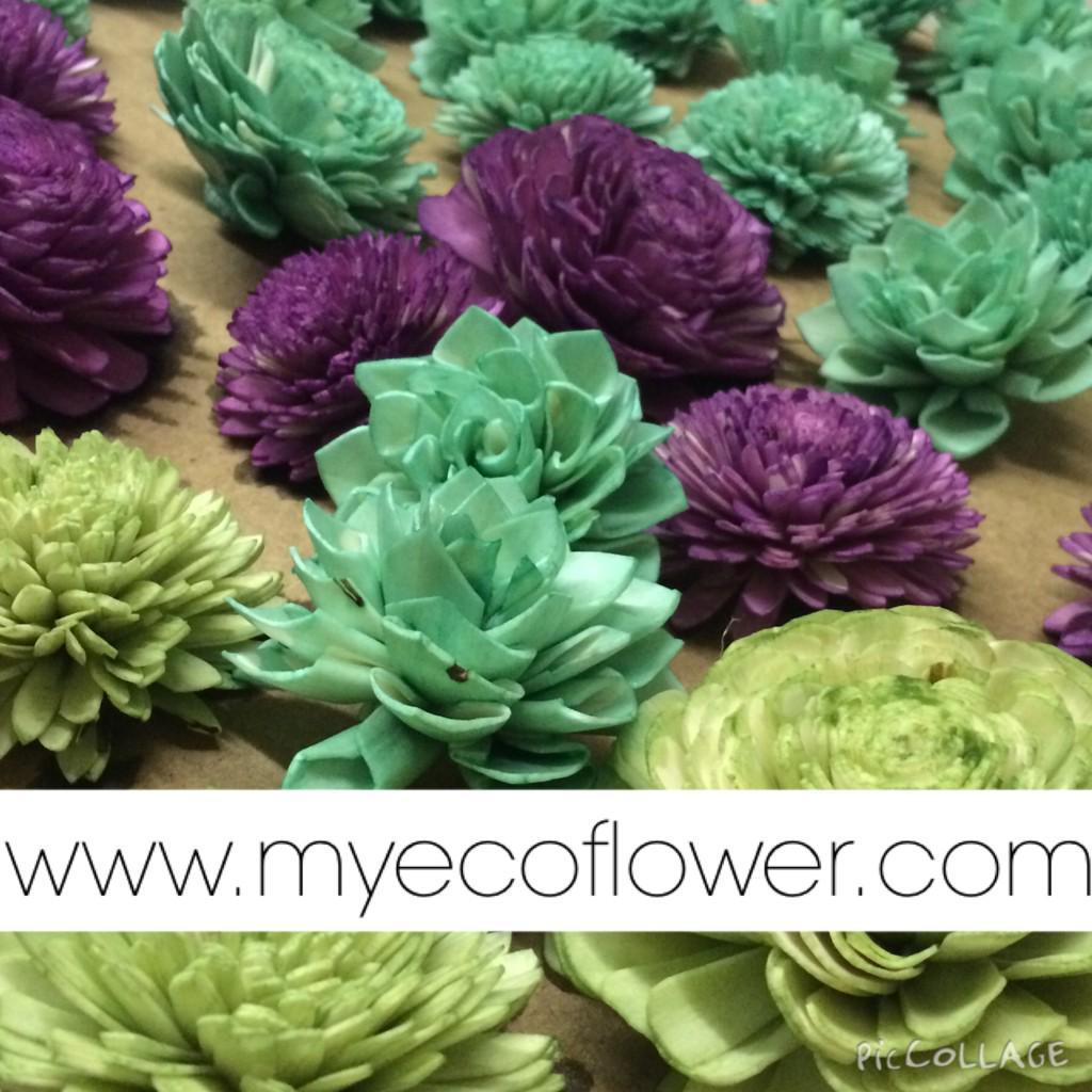 Eco Flower EcoFlower1