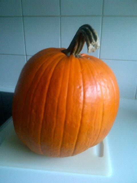 Halloween Pompoensoep.Gaintpumpkin Hashtag On Twitter