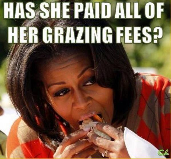She takes her food and stuffs it, but kids go home hungry. #ThanksMichelleObama http://t.co/8YKoIpvC0F