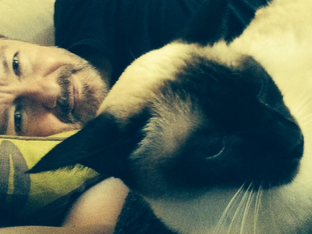 Thanks for your questions. Nap time. http://t.co/WIgUs3p4Ng