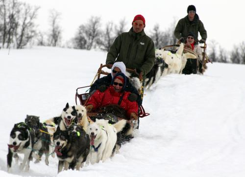 I'd love to try dog sledding with @HurtigrutenUSA! Would you? #Hurtigruten #AD #TMOM http://t.co/9G8nM3jkcY http://t.co/E20K7Q1szT