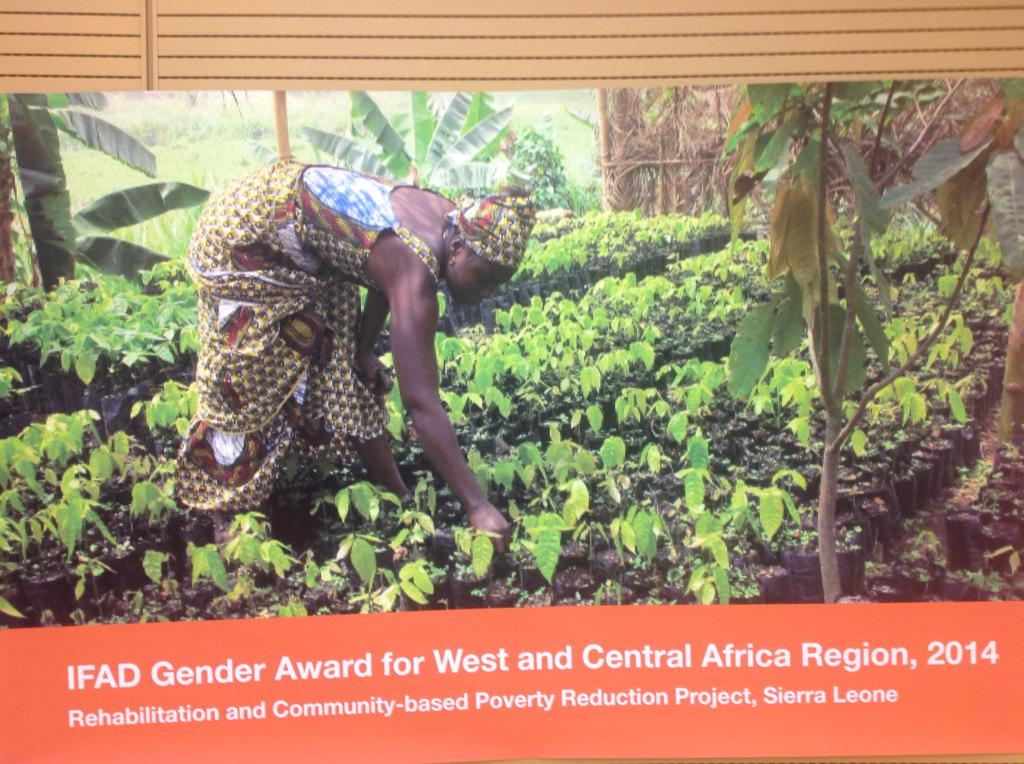 Empowered women are more resilient, says @IFADnews McIntire http://t.co/W9fjgASRnI #ifadgender http://t.co/hVc50oXtsm