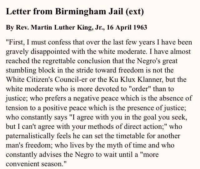 this excerpt from mlk s letter from birmingham jail and apply it to D7H1syW8