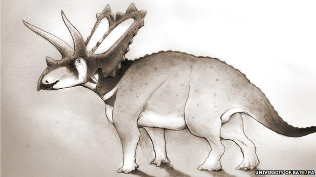 Dig This: New Dinosaur Species Discovered in Museum After 75 Years