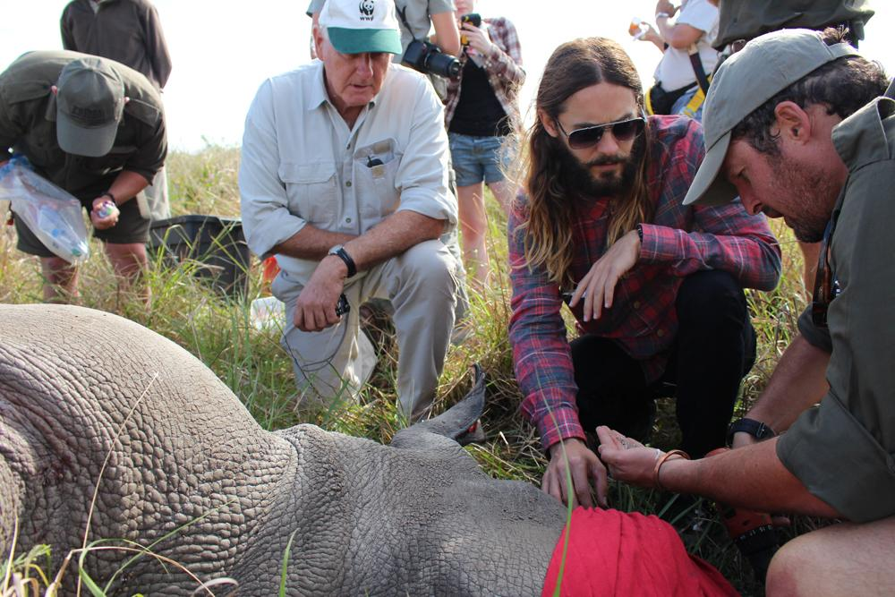 Here in South Africa w/ @world_wildlife collaring a rhino #iam4rhinos http://t.co/1aboQ5FhE5