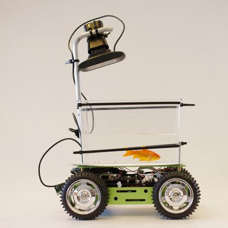 Fish on Wheels - a self-driving car for goldfish - see it here: http://t.co/YDvXPGDHkC #fun #technology http://t.co/WtUt7OHts2