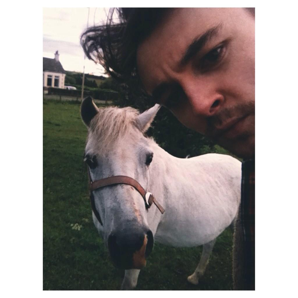 I don't post that often, but when I do it's a 5am selfie with a horse. http://t.co/mhFUz3OkqV