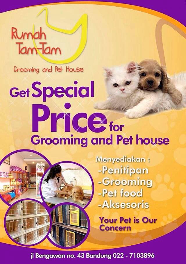 Media Tweets By Grooming Pet House Rumahtamtam Twitter