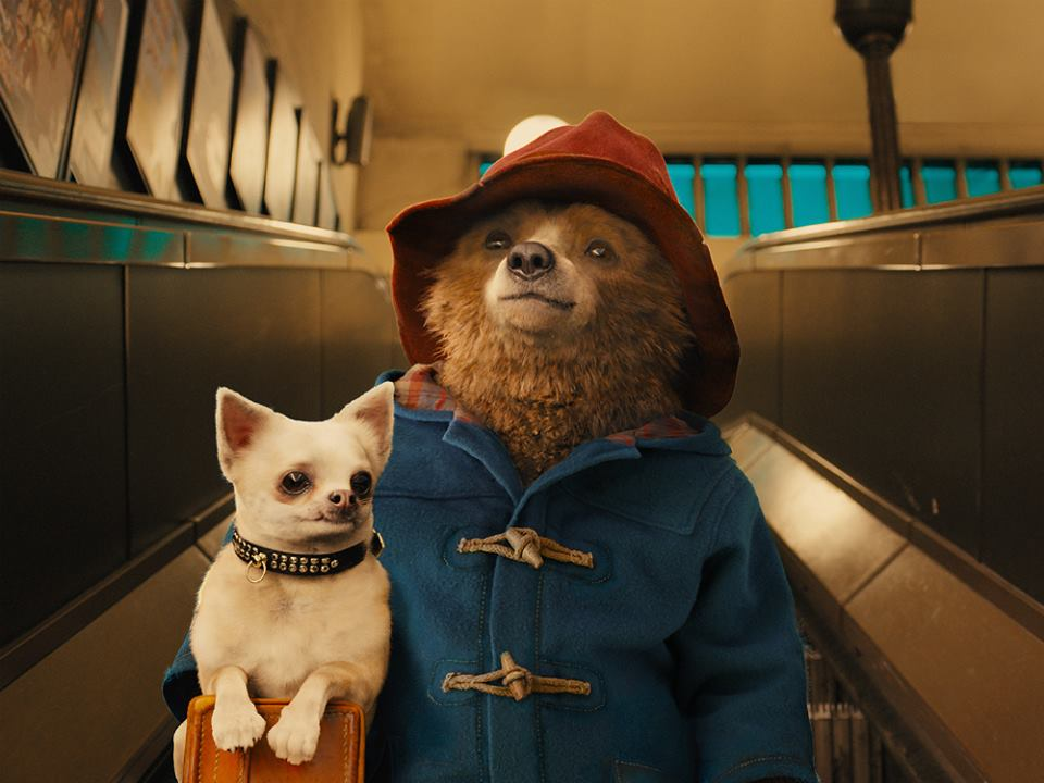 Want to win a @paddingtonbear goodiebag? Just RT & tell us where in London you'd take Paddington if he was your guest http://t.co/TCPXpRSzr7