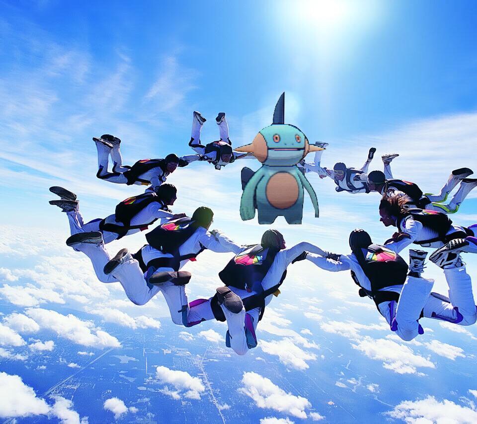 スカイダイビングで1人だけパラシュートを無しで放り出された時のヌマクロー http://t.co/uaTK0UP7xd
