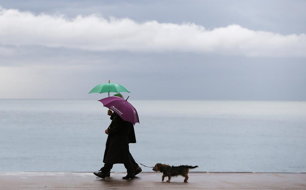 RT @Independent: How much does a dog understand? More than you might think http://t.co/ShbJ5tnq1A http://t.co/bhhkePhPbh