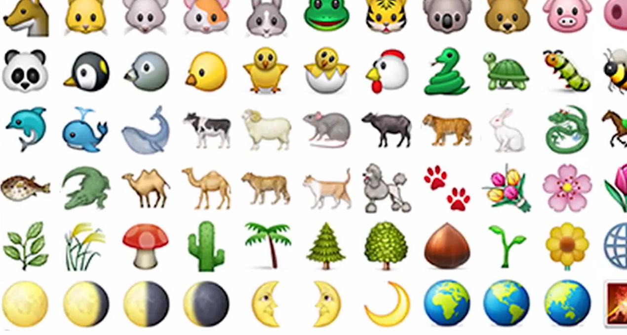 Too funny! Emojis explained by clueless adults: http://t.co/SVCY0FjmNX #video http://t.co/85f8WFcGYw