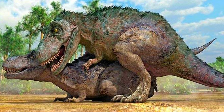 """Matt Ufford on Twitter: """"NICE. RT @pickover: This is what T. Rex having sex  would have looked like. Source: http://t.co/bWCs1HNnYh  http://t.co/k4Sx1HsRti"""""""