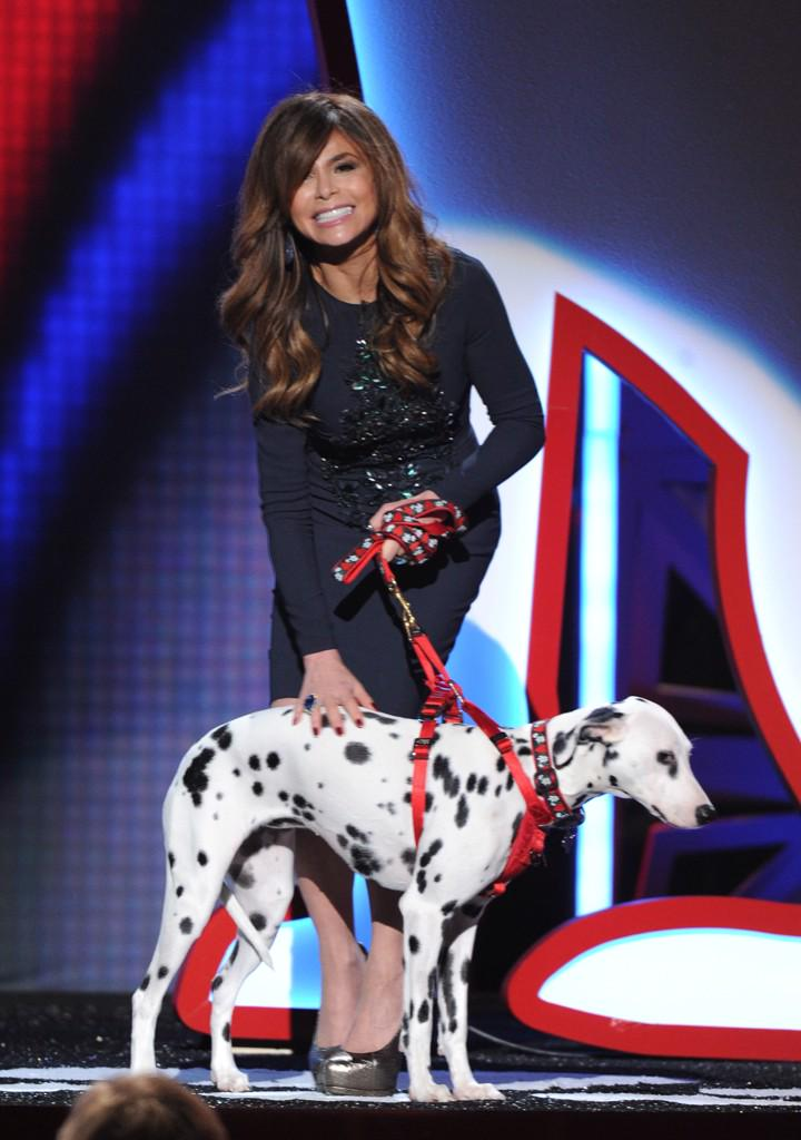 You guys watching #foxcauseforpaws? It's on @FOXTV RIGHT NOW!! I loved being a part of it! xoP http://t.co/oheVOfWKAS