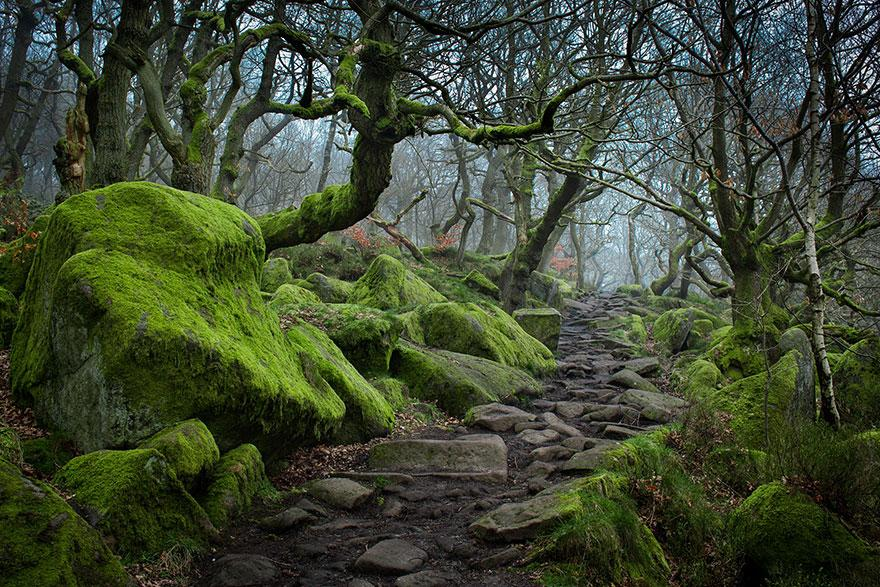 28 Magical Paths Begging To Be Walked http://t.co/9nT2SSh0Ij #travel via @zaibatsu @Crazy_Golfer http://t.co/gxvhr0uyPk