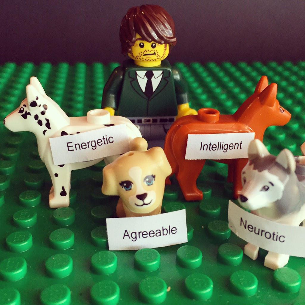Thumbnail for Do You Believe in Dog? hosts @IamCitSci Twitter