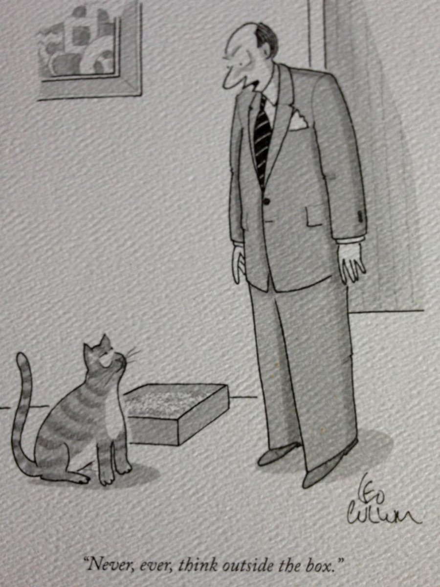 Why cats never make good entrepreneurs. http://t.co/Kk7Jo0uEv0