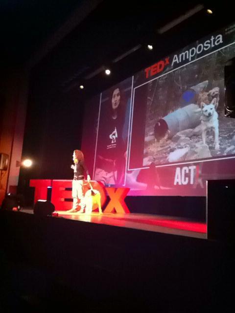 I les engrescades ens han portat als seus amics, fent possible l'impossible #TEDxAmp http://t.co/pcLLdcgD75