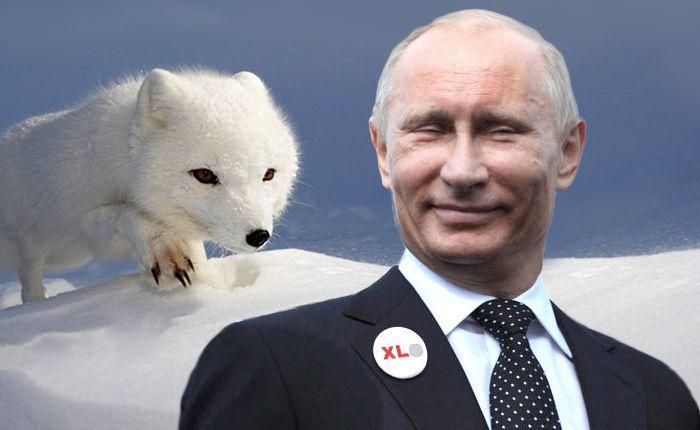 Россия не втягивается в какую-то гонку вооружений. Мы просто наверстываем упущенное и интенсивно используем то, что имеем, - Путин - Цензор.НЕТ 9628