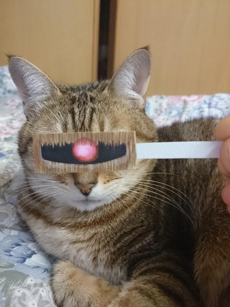 モビルニャーマー。#猫モンタージュ pic.twitter.com/fT8E84jv9W