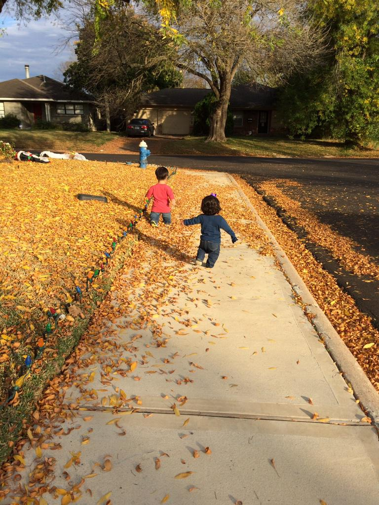 Will & Zoey enjoying the falling leaves! What are you doing today? http://t.co/Ctx4wubxaB