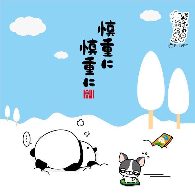 """パンダのたぷたぷ on Twitter: """"..."""