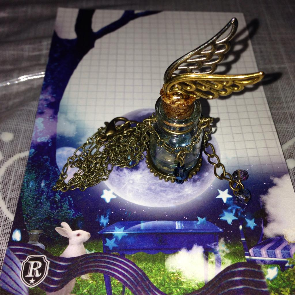 子猫堂さんで買って来た、mse.さんの羽ばたく小瓶ネックレス(((o(*゚▽゚*)o))) http://t.co/eUl5bE5hOV