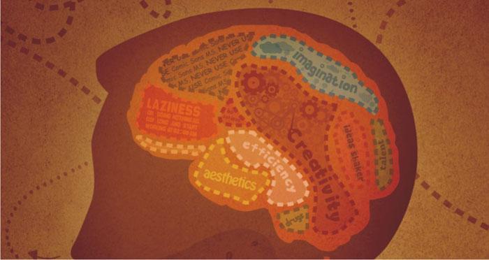 Il cervello umano cancella i ricordi inutili