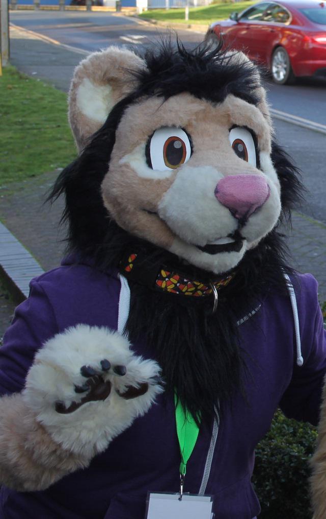 fur meets near me
