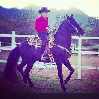 3c3b4c679ef65  DebajoDelSombrero Hay Un Hombre Ranchero que esta bien guapo y se llama   panchourestipic.twitter.com AjHqGV3kqr