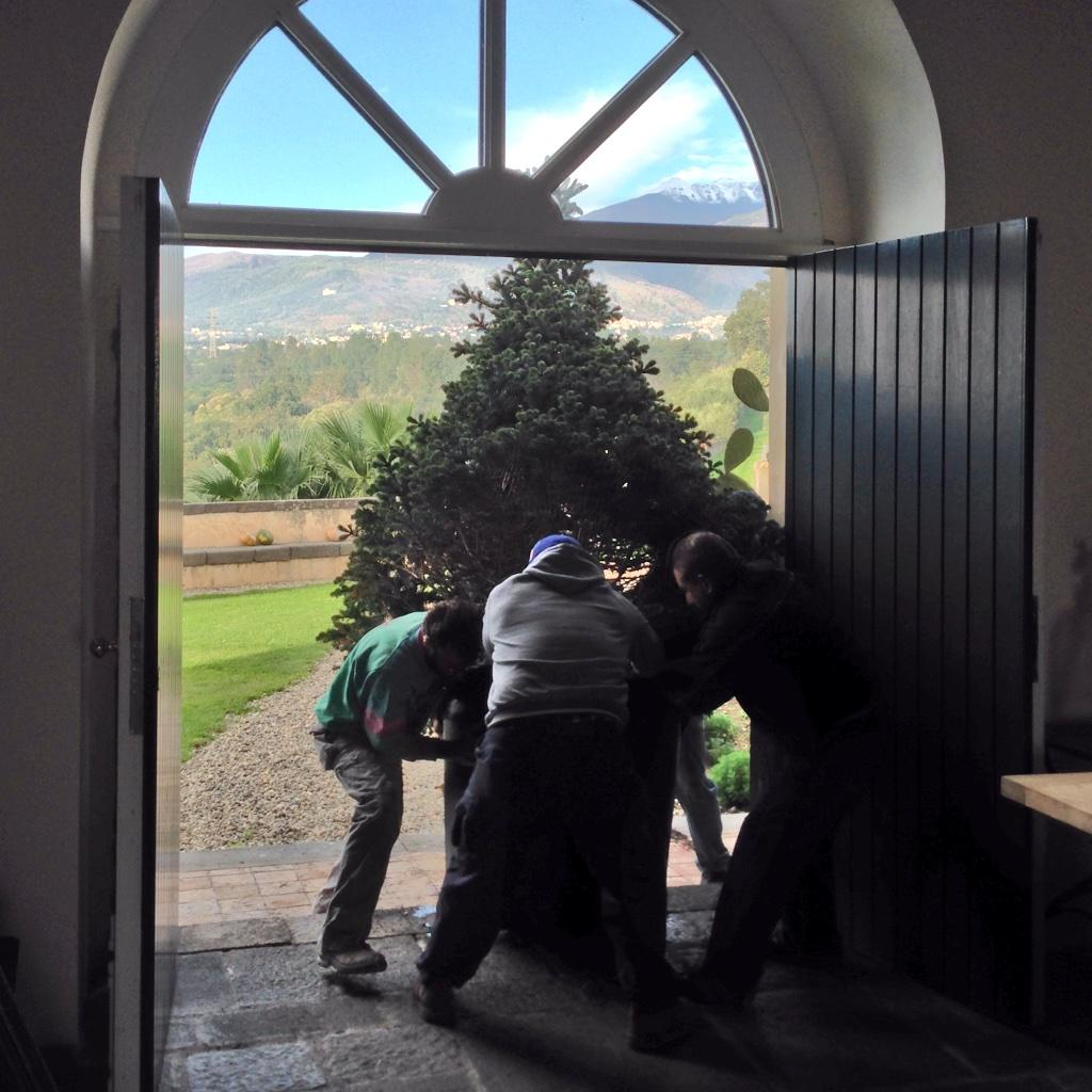 Bringing our huge #christmastree with roots home. In spring we'll replant it in the garden @ThinkVillas #thinkgreen