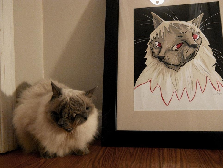 Frank and Louie, the worlds oldest Janus cat, has died.  http://t.co/xFMNr3bfTK  Here he is with my portrait of him. http://t.co/0ny9Sh3eiP