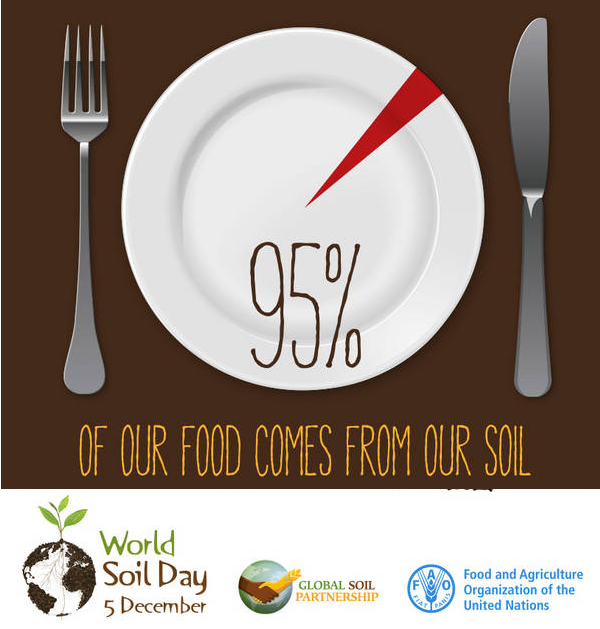 #SoilFacts: 95% of our food comes from our soil! #WorldSoilDay #IYS2015 via #UNFAO http://t.co/XYhDZ4Dk1P