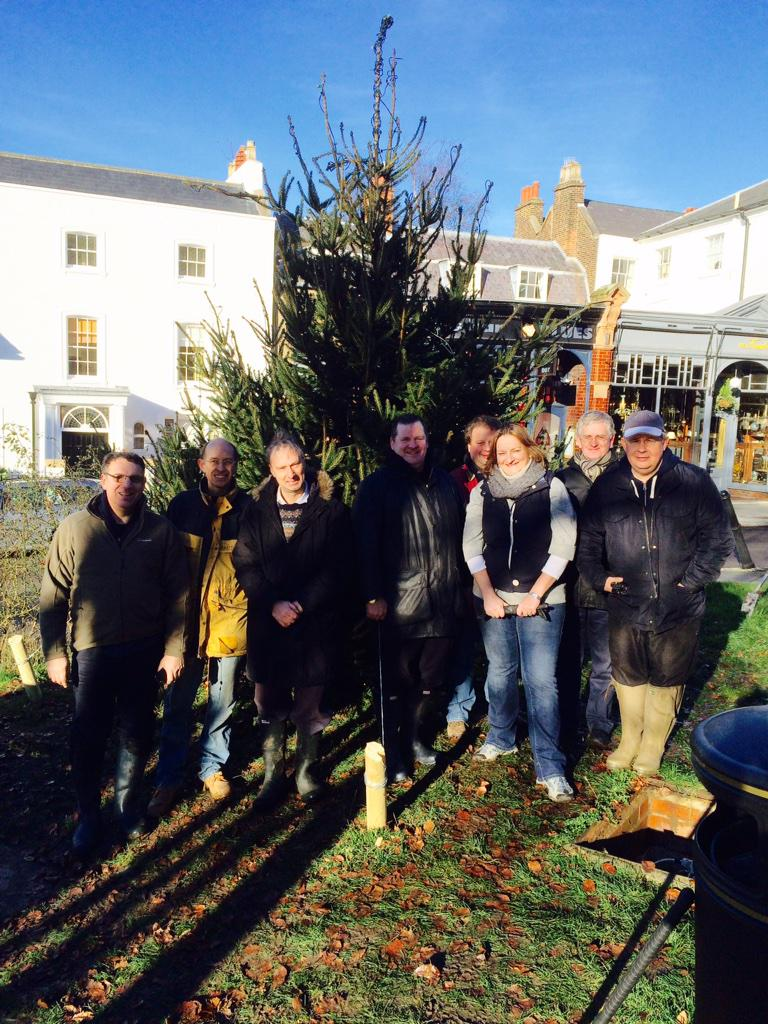 harrowhilltrust on twitter a happy harrow hill trust christmas tree team all done and the lights work too httptcofi31ppzrxy