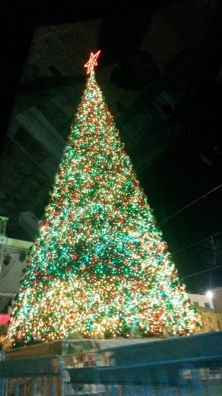 #Bethlehem Christmas tree :) http://t.co/IMMJNwWfJs