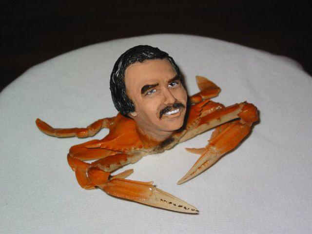Day 8 of #alternativeadventcalendar is a crab with the face of Burt Reynolds http://t.co/J0yfI3B4ZE