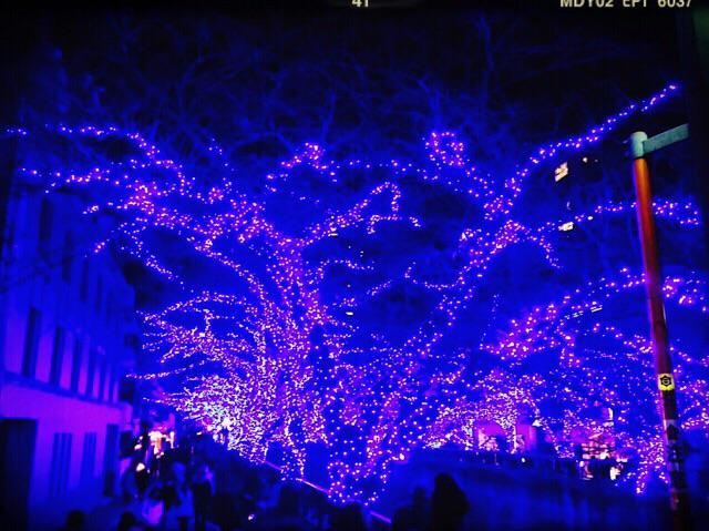 目黒川、青の洞窟綺麗でしたー! pic.twitter.com/Z2yhwa4SfS