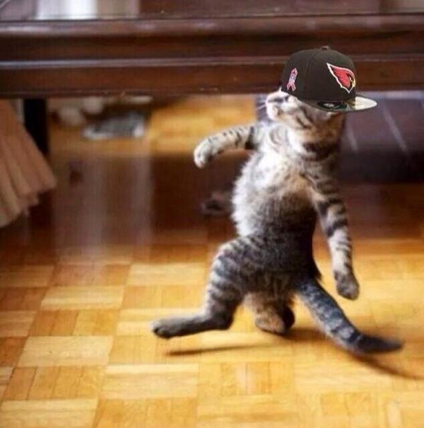 How Cards fans walked into the office today. #LikeABoss http://t.co/osunIKP4Df