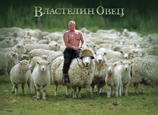 """Лаврову не нравится, что ОБСЕ """"избыточно"""" внимательно следит за террористами - Цензор.НЕТ 2518"""