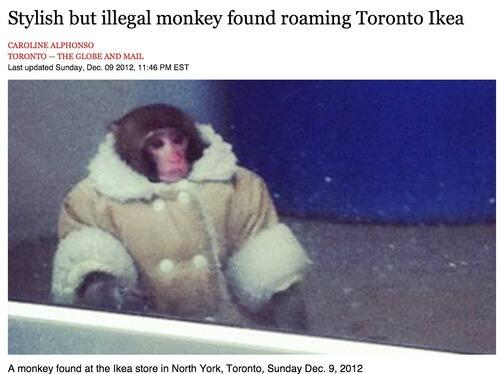 Two years ago. Stay safe, IKEA monkey, wherever you are. #neverforget http://t.co/fwWiWBBVDb