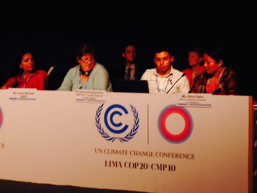 AlinaSaba of Limbu #indigenous group #Nepal highlights #gender #inclusion in #climate #policy #GenderCOP20 #COP20 http://t.co/fhV1nIwAUj