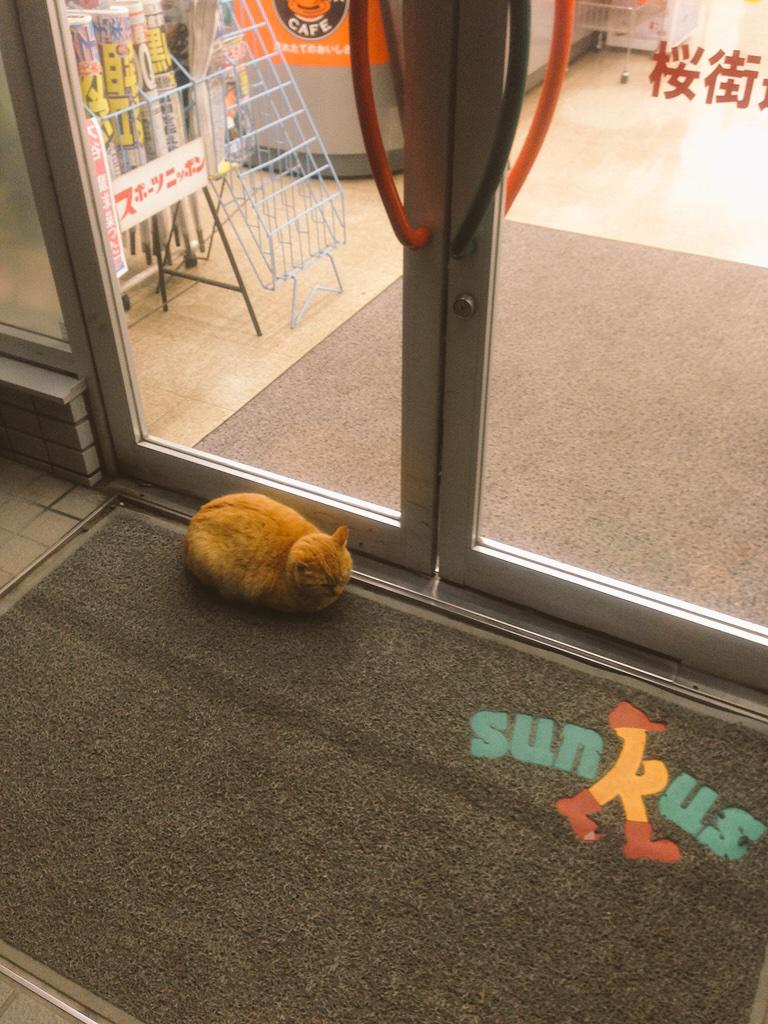 コンビニでドアの前に居座って営業妨害してるやついたから写真に撮って晒す。 pic.twitter.com/N8efgFnrZt