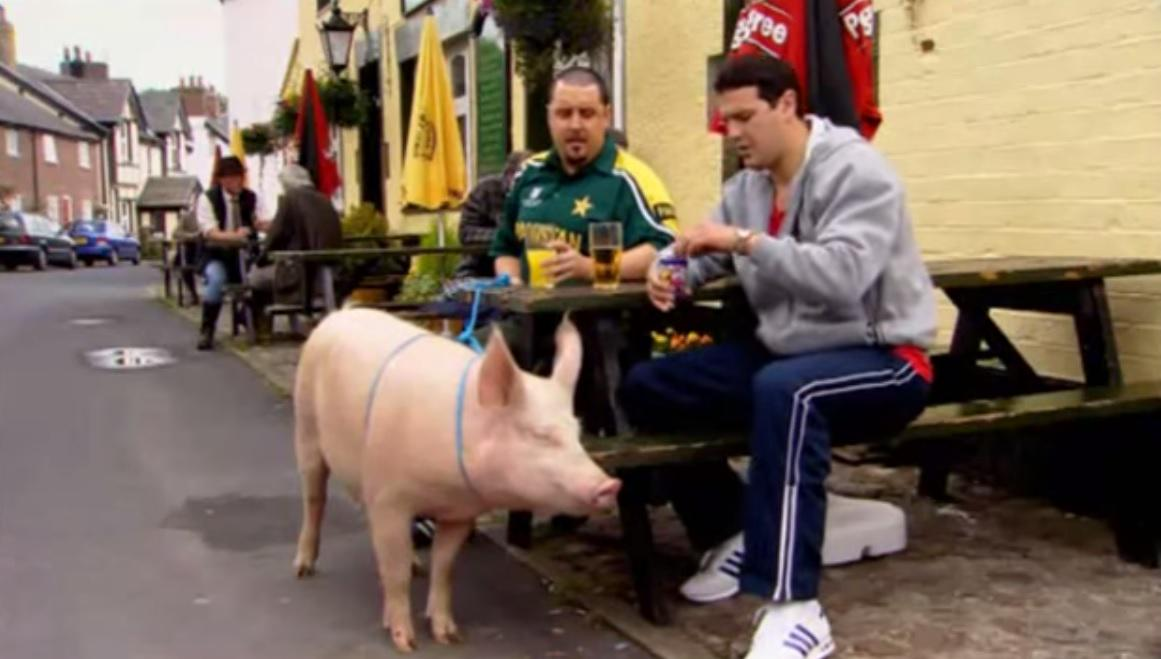 Image result for max and paddy pig